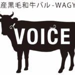 voice-g